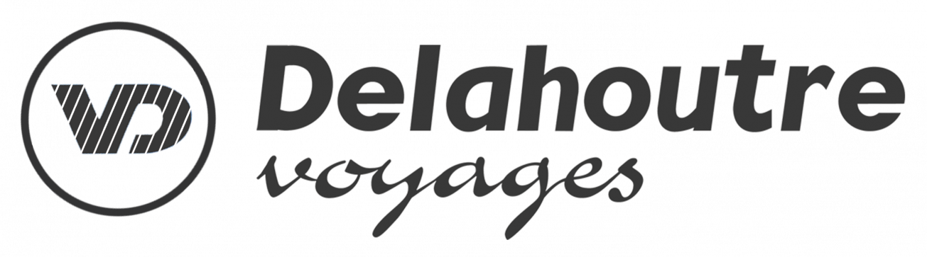 Logo Delahoutre NEW png